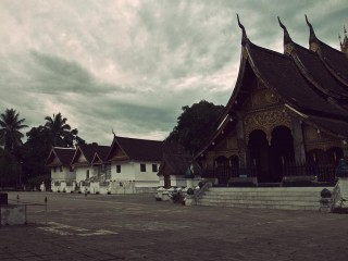 Buffalo Tours – Lao