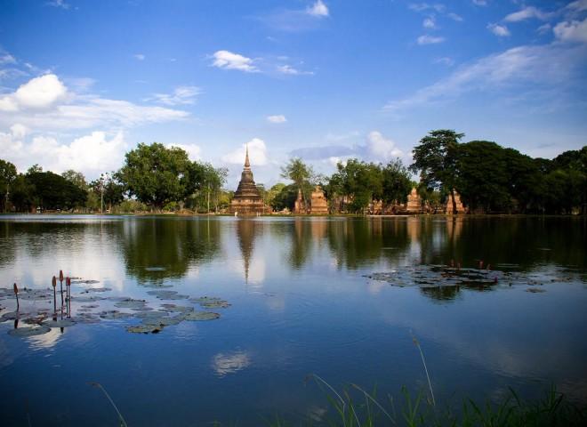 Buffalo Tours – Thailand